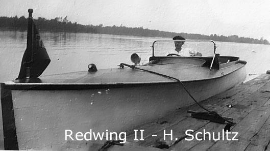 Redwing2